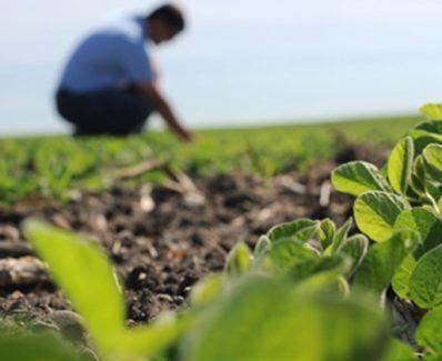perfil-del-agronomo-nueva-era